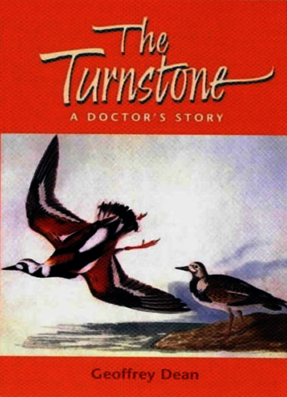 The Turnstone
