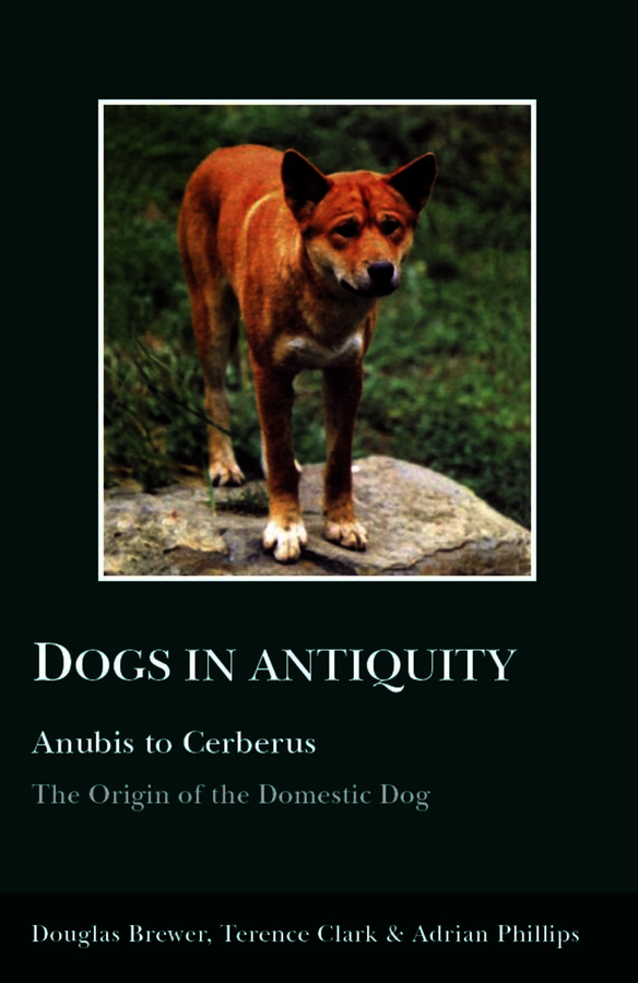 Dogs in Antiquity: Anubis to Cerberus
