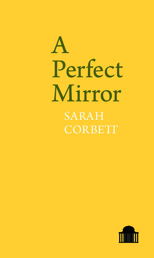 A Perfect Mirror