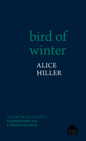 bird of winter