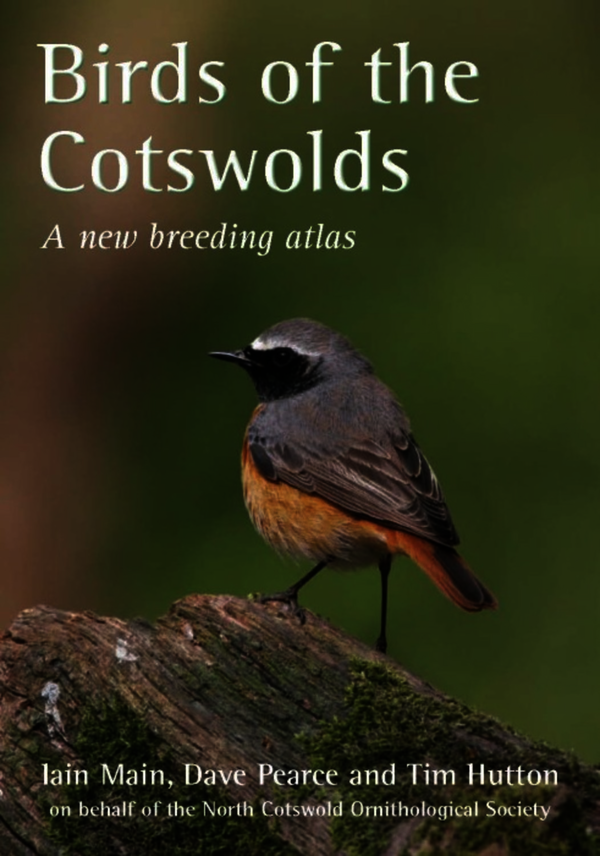 Birds of the Cotswolds
